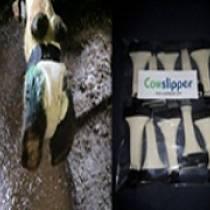 Cowslipper